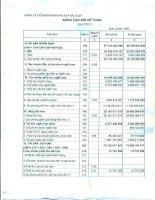 Báo cáo tài chính quý 1 năm 2011 - Công ty Cổ phần Khoáng sản Bắc Kạn