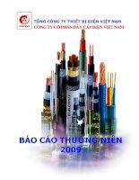 Báo cáo thường niên năm 2009 - Công ty cổ phần Dây Cáp Điện Việt Nam