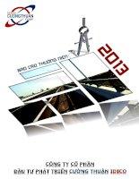 Báo cáo thường niên năm 2013 - Công ty Cổ phần Đầu tư Phát triển Cường Thuận IDICO