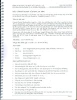 Báo cáo tài chính công ty mẹ năm 2011 (đã kiểm toán) - Công ty Cổ phần Tập đoàn Đức Long Gia Lai