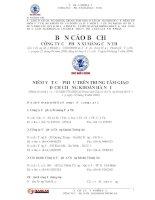 Bản cáo bạch - Công ty Cổ phần Khoáng sản & Xi măng Cần Thơ