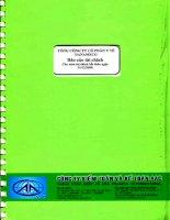Báo cáo tài chính công ty mẹ năm 2008 (đã kiểm toán) - Tổng Công ty cổ phần Y tế Danameco