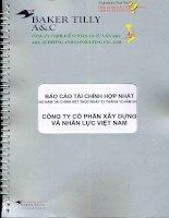 Báo cáo tài chính hợp nhất năm 2013 (đã kiểm toán) - Công ty cổ phần Xây dựng và Nhân lực Việt Nam