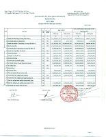 Báo cáo tài chính công ty mẹ quý 1 năm 2013 - Công ty Cổ phần Sản xuất Thương mại May Sài Gòn