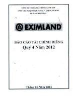 Báo cáo tài chính công ty mẹ quý 4 năm 2012 - Công ty cổ phần Bất động sản E Xim