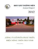 Báo cáo thường niên năm 2012 - Công ty Cổ phần Phát triển điện Nông thôn Trà Vinh