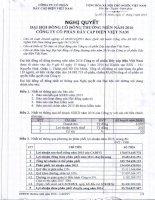 Nghị quyết Đại hội cổ đông thường niên - Công ty cổ phần Dây Cáp Điện Việt Nam