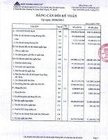 Báo cáo tài chính công ty mẹ quý 2 năm 2013 - Công ty Cổ phần Dịch vụ và Xây dựng Địa ốc Đất Xanh