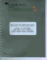 Báo cáo tài chính hợp nhất năm 2015 (đã kiểm toán) - Công ty Cổ phần Chế biến và Xuất nhập khẩu Thuỷ sản Cà Mau