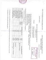 Báo cáo tình hình quản trị công ty - Công ty Cổ phần Du lịch và Xuất nhập khẩu Lạng Sơn