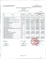 Báo cáo tài chính công ty mẹ quý 1 năm 2012 - Công ty Cổ phần Sản xuất Thương mại May Sài Gòn