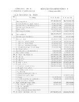 Báo cáo tài chính quý 3 năm 2008 - Công ty Cổ phần Tập đoàn Đức Long Gia Lai