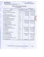 Báo cáo tài chính công ty mẹ quý 3 năm 2012 - Công ty Cổ phần Dịch vụ và Xây dựng Địa ốc Đất Xanh