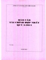 Báo cáo tài chính hợp nhất quý 3 năm 2011 - Công ty Cổ phần Bóng đèn Điện Quang