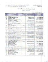 Báo cáo tài chính hợp nhất quý 3 năm 2010 - Ngân hàng Thương mại Cổ phần Công thương Việt Nam