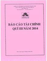 Báo cáo tài chính quý 3 năm 2014 - Công ty Cổ phần Gạch men Chang Yih
