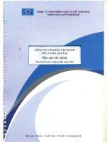Báo cáo tài chính công ty mẹ quý 2 năm 2013 (đã soát xét) - Công ty Cổ phần Tập đoàn Đức Long Gia Lai