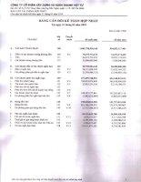 Báo cáo tài chính hợp nhất quý 1 năm 2010 - Công ty Cổ phần Xây dựng và Kinh doanh Vật tư