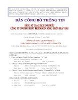 Bản cáo bạch - Công ty Cổ phần Phát triển điện Nông thôn Trà Vinh