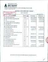 Báo cáo tài chính công ty mẹ quý 1 năm 2010 - Công ty Cổ phần Dịch vụ và Xây dựng Địa ốc Đất Xanh