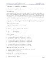 Báo cáo tài chính công ty mẹ quý 2 năm 2011 - Công ty cổ phần Gia Lai CTC