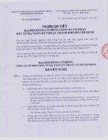 Nghị quyết Đại hội cổ đông bất thường - Công ty cổ phần Đầu tư Hạ tầng Kỹ thuật T.P Hồ Chí Minh