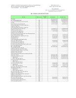 Báo cáo tài chính quý 2 năm 2011 - Công ty Cổ phần Thương mại Dịch vụ Vận tải Xi măng Hải Phòng