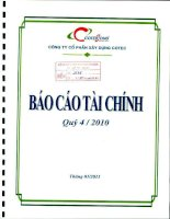 Báo cáo tài chính quý 4 năm 2010 - Công ty Cổ phần Xây dựng Cotec