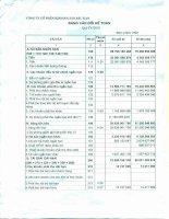 Báo cáo tài chính quý 4 năm 2010 - Công ty Cổ phần Khoáng sản Bắc Kạn