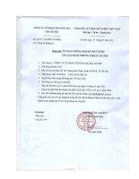 Báo cáo tài chính quý 4 năm 2010 - Công ty Cổ phần Thương mại Bia Hà Nội