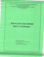 Báo cáo tài chính quý 3 năm 2012 - Công ty Cổ phần Đầu tư Thương mại Bất động sản An Dương Thảo Điền