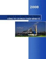 Báo cáo thường niên năm 2008 - Công ty Cổ phần Thép Đình Vũ