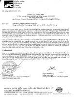 Báo cáo tài chính quý 2 năm 2009 - Công ty Cổ phần Thương mại Dịch vụ Vận tải Xi măng Hải Phòng