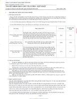 Báo cáo tài chính hợp nhất quý 3 năm 2010 - Công ty cổ phần Kỹ thuật điện Toàn Cầu