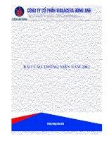 Báo cáo thường niên năm 2012 - Công ty Cổ phần Viglacera Đông Anh