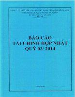 Báo cáo tài chính hợp nhất quý 3 năm 2014 - Công ty cổ phần Đầu tư Hạ tầng Kỹ thuật T.P Hồ Chí Minh