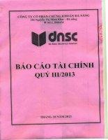 Báo cáo tài chính quý 3 năm 2013 - Công ty Cổ phần Chứng khoán Đà Nẵng