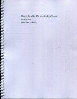 Báo cáo tài chính năm 2013 (đã kiểm toán) - Công ty Cổ phần Chế biến Gỗ Đức Thành