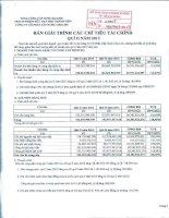 Báo cáo tài chính quý 2 năm 2013 - Công ty Cổ phần Cấp nước Chợ Lớn