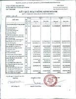 Báo cáo KQKD công ty mẹ quý 3 năm 2011 - Công ty Cổ phần Nông dược H.A.I