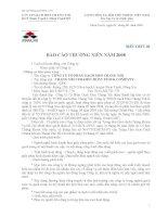 Báo cáo thường niên năm 2008 - Công ty Cổ phần Gạch men Chang Yih
