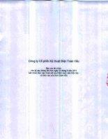 Báo cáo tài chính công ty mẹ quý 2 năm 2011 (đã soát xét) - Công ty cổ phần Kỹ thuật điện Toàn Cầu