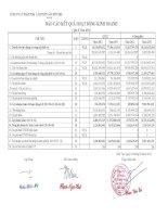 Báo cáo tài chính quý 2 năm 2012 - Công ty Cổ phần Xuất nhập khẩu Lâm Thủy sản Bến Tre