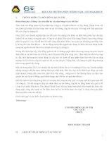 Báo cáo thường niên năm 2013 - Công ty Cổ phần Đầu tư và Xây dựng Thành Nam