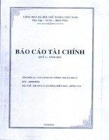 Báo cáo tài chính công ty mẹ quý 2 năm 2012 - Công ty Cổ phần Đầu tư Phát triển Cường Thuận IDICO