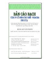 Bản cáo bạch - Công ty Cổ phần Viglacera Đông Triều