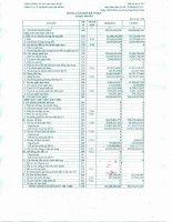 Báo cáo tài chính quý 2 năm 2013 - Công ty Cổ phần VICEM Vật liệu Xây dựng Đà Nẵng