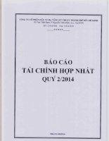Báo cáo tài chính hợp nhất quý 2 năm 2014 - Công ty cổ phần Đầu tư Hạ tầng Kỹ thuật T.P Hồ Chí Minh
