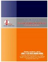 Báo cáo tài chính hợp nhất quý 2 năm 2011 - Công ty Cổ phần Chương Dương