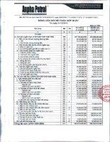 Báo cáo tài chính hợp nhất quý 4 năm 2013 - Công ty Cổ phần Tập đoàn Dầu khí An Pha